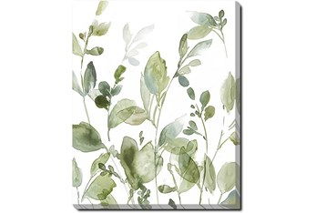 40X50 Botanical Watercolor With Gallery Wrap Canvas