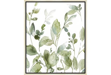 22X26 Botanical Watercolor With Birch Frame