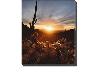 20X24 Cactus Sunset With Gallery Wrap Canvas