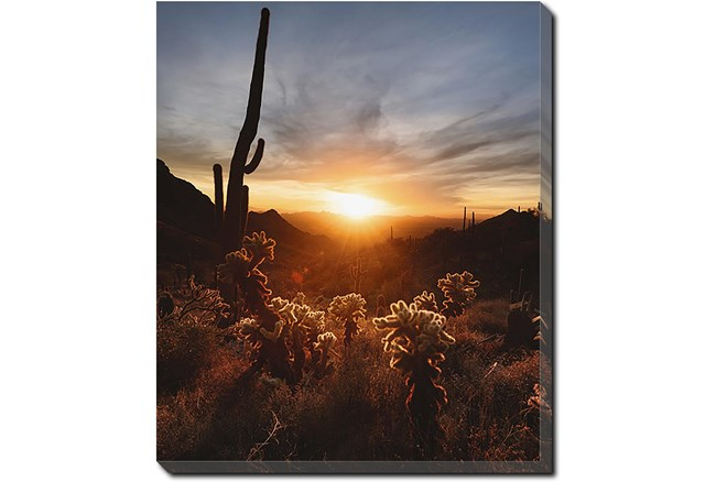 20X24 Cactus Sunset With Gallery Wrap Canvas - 360