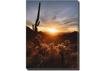 30X40 Cactus Sunset With Gallery Wrap Canvas