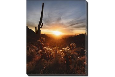 40X50 Cactus Sunset With Gallery Wrap Canvas