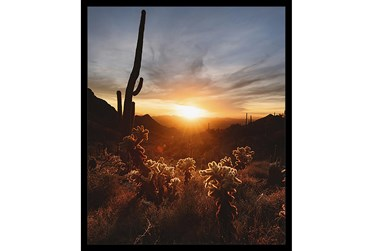 22X26 Cactus Sunset With Black Frame