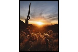 32X42 Cactus Sunset With Black Frame