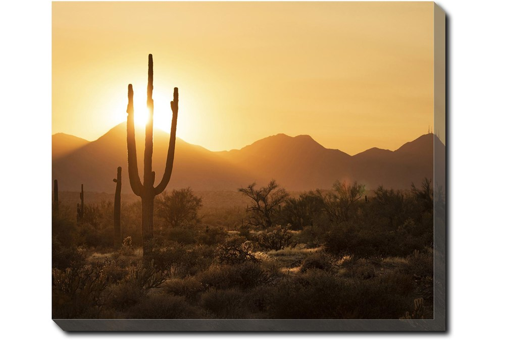 24X20 Desert Sunset With Gallery Wrap Canvas