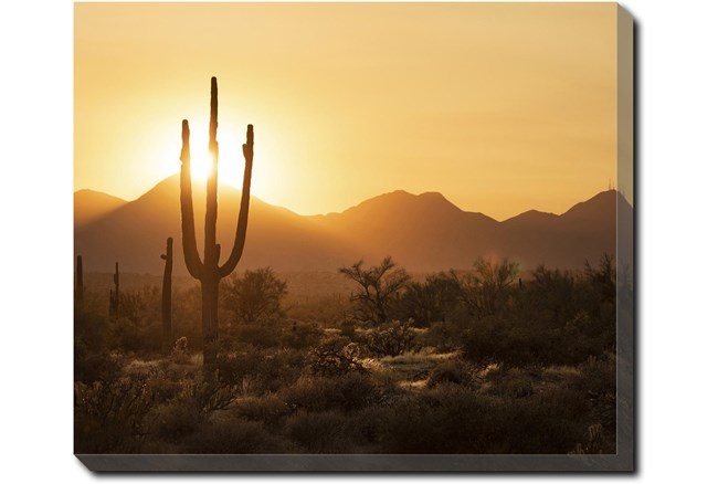 24X20 Desert Sunset With Gallery Wrap Canvas - 360