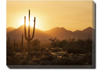 40X30 Desert Sunset With Gallery Wrap Canvas