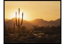 42X32 Desert Sunset With Black Frame