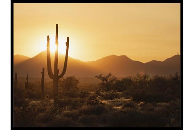 42X32 Desert Sunset With Black Frame - 360