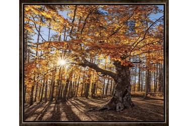26X22 Fall Landscape With Espresso Frame