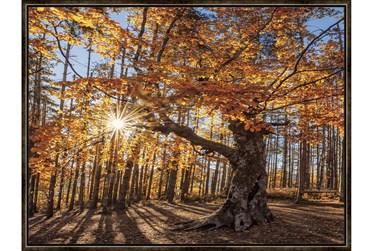 42X32 Fall Landscape With Espresso Frame