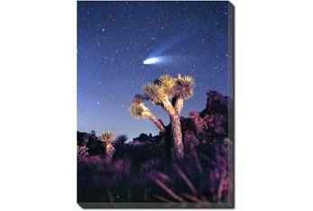 30X40 Joshua Tree Np Haley's Comet With Gallery Wrap Canvas