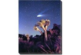 40X50 Joshua Tree Np Haley's Comet With Gallery Wrap Canvas