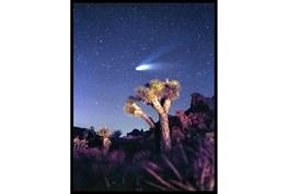 32X42 Joshua Tree Np Haley'S Comet With Black Frame