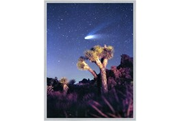 32X42 Joshua Tree Np Haley'S Comet With Silver Frame