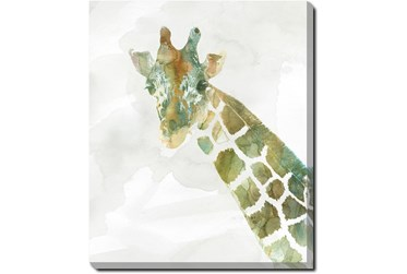 20X24 Jungle Friends Giraffe With Gallery Wrap Canvas