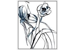 42X52 Floral Fringe 1 Blue With White Frame