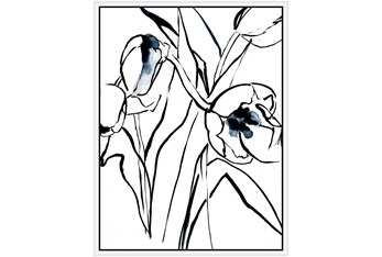 32X42 Floral Fringe 2 Blue With White Frame