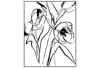 42X52 Floral Fringe 2 Blue With White Frame
