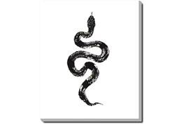 20X24 B&W Snake 1 With Gallery Wrap Canvas