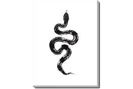 30X40 B&W Snake 1 With Gallery Wrap Canvas