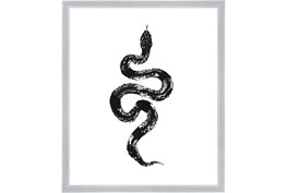 22X26 B&W Snake 1 With Silver Frame