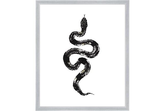 22X26 B&W Snake 1 With Silver Frame  - 360