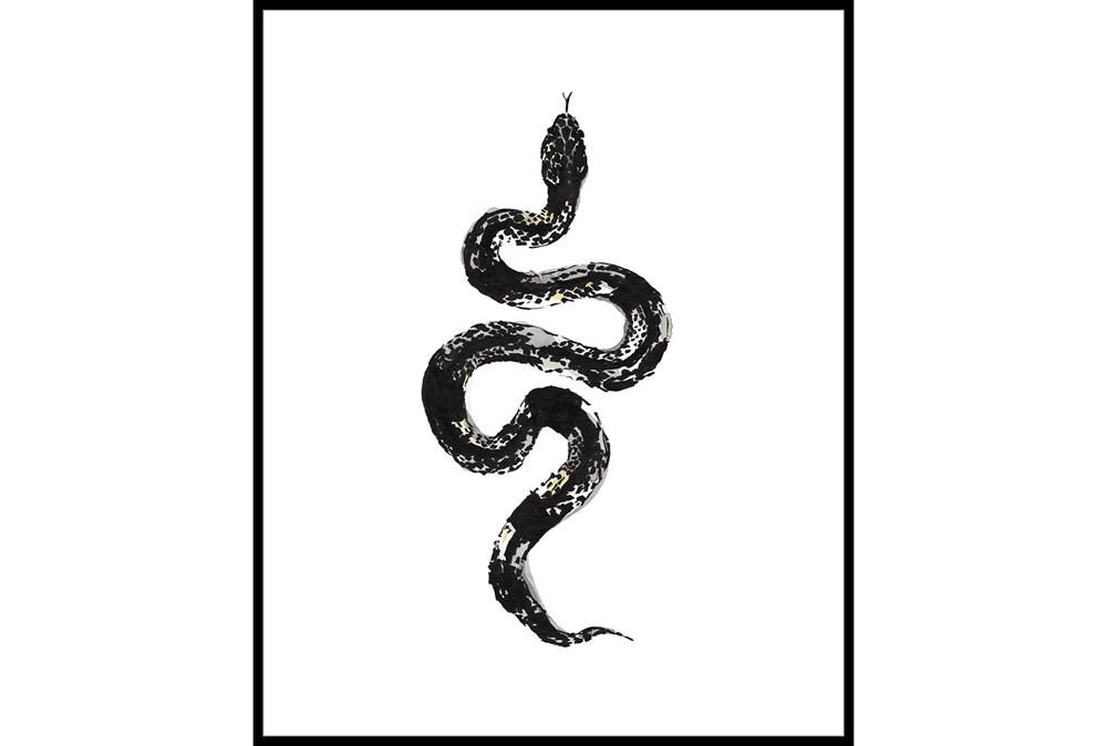 42X52 B&W Snake 1 With Black Frame