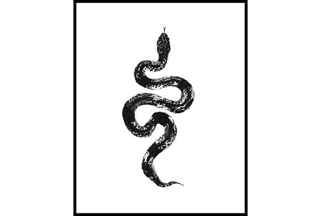 42X52 B&W Snake 1 With Black Frame  - 360
