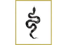 42X52 B&W Snake 1 With Gold Frame