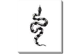 20X24 B&W Snake 2 With Gallery Wrap Canvas