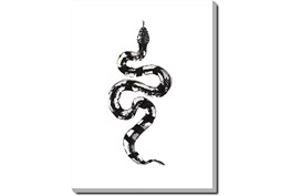 30X40 B&W Snake 2 With Gallery Wrap Canvas