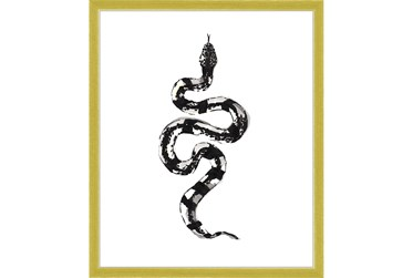 22X26 B&W Snake 2 With Gold Frame