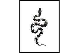 32X42 B&W Snake 2 With Black Frame
