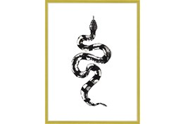 32X42 B&W Snake 2 With Gold Frame