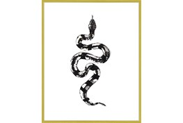 42X52 B&W Snake 2 With Gold Frame