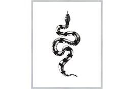 42X52 B&W Snake 2 With Silver Frame