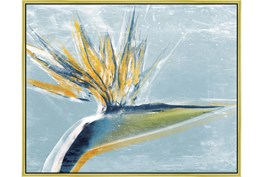52X42 Bird Of Paradise With Gold Frame