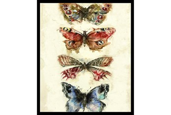 22X26 Butterflies With Black Frame