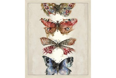 22X26 Butterflies With Birch Frame