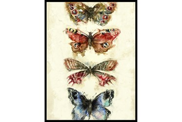 32X42 Butterflies With Black Frame
