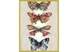 32X42 Butterflies With Gold Frame