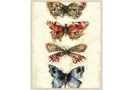 42X52 Butterflies With Birch Frame