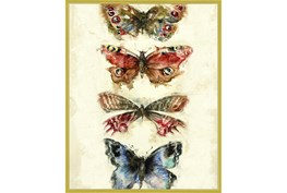 42X52 Butterflies With Gold Frame