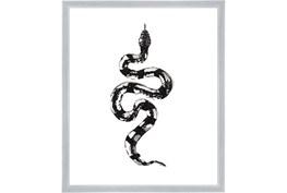 22X26 B&W Snake 2 With Silver Frame