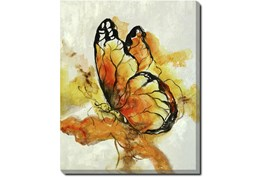 40X50 The Monarch With Gallery Wrap Canvas