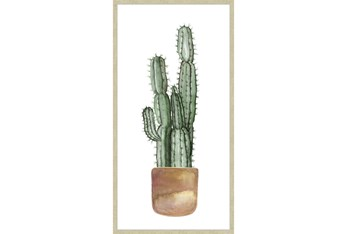 27X54 Tall Cactus With Champage Frame