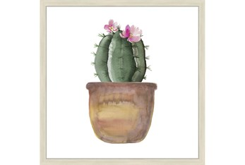 24X24 Blooming Cactus With Brich Frame