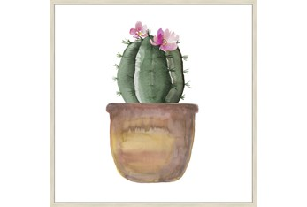 45X45 Blooming Cactus With Brich Frame