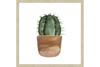 24X24 Short Cactus With Champage Frame